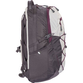 The North Face Borealis Ryggsäck Dam 25 L grå